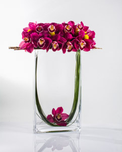 Orchid Parabola in New York NY, Starbright Floral Design