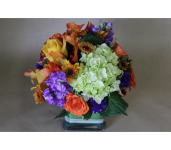Fall Sampler in Birmingham MI, Tiffany Florist