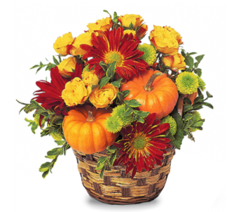 Delightful Fall Basket in McLean VA, MyFlorist