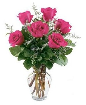 6 Hot Pink Roses in a Vase in Naperville IL, Naperville Florist