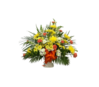 Warmest Wishes in Waterbury CT, The Orchid Florist