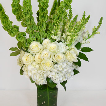 Fiore in Dallas TX, Dr Delphinium Designs & Events