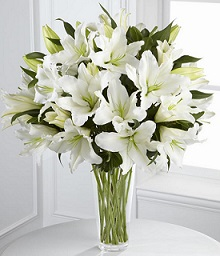 White Lily Arrangement in Perrysburg & Toledo OH  OH, Ken's Flower Shops