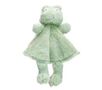 Blankie Buddy-Froggie in Detroit and St. Clair Shores MI, Conner Park Florist