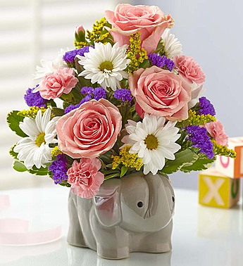 Baby girl elephant in Princeton NJ, Perna's Plant and Flower Shop, Inc