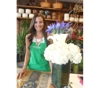 Flight of the Alcove in Dallas TX, Petals & Stems Florist