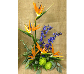 Birds of Paradise Styled Arrangement in Wyoming MI, Wyoming Stuyvesant Floral