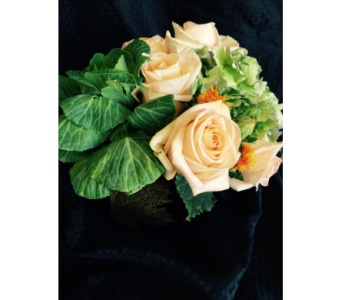 Falls Arrived in Kent WA, Blossom Boutique Florist & Candy Shop
