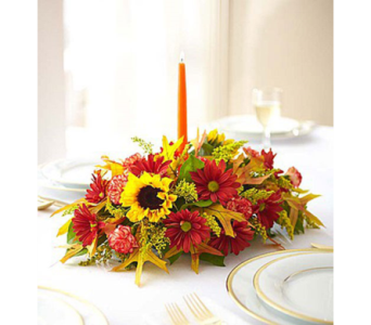 Fields of Europe for Fall Centerpieces-Small in El Cajon CA, Conroy's