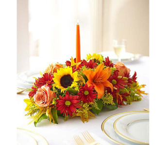 Fields of Europe for Fall Centerpieces-Medium in El Cajon CA, Conroy's