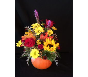 Pick of the Patch Pumpkin bouquet in Sycamore IL, Kar-Fre Flowers