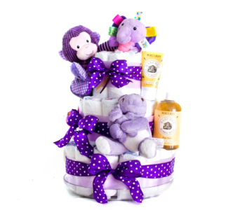 Diaper Cake for a Girl in Nashville TN, Emma's Flowers & Gifts, Inc.