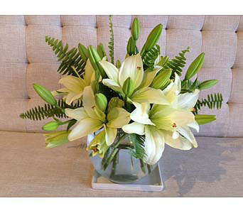 White Lilies Only Please in Charleston SC, Tiger Lily Florist Inc.