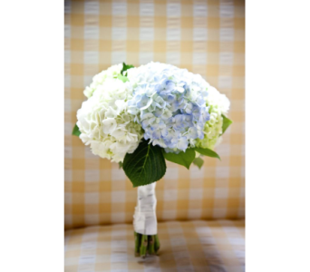 Blue and White Hydrangea Bouquet in Kissimmee FL, Golden Carriage Florist