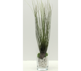 Tall Air Plant Arrangement in Traverse City MI, Teboe Florist