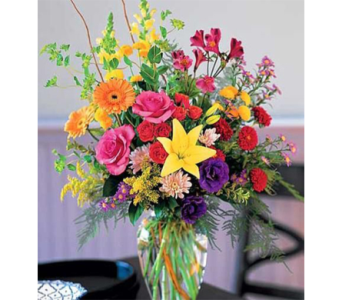 Indianapolis Dazzler in Indianapolis IN, George Thomas Florist