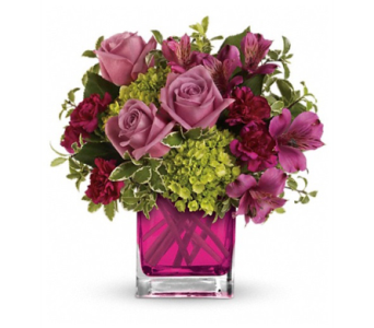 Splendid Surprise in Indianapolis IN, George Thomas Florist