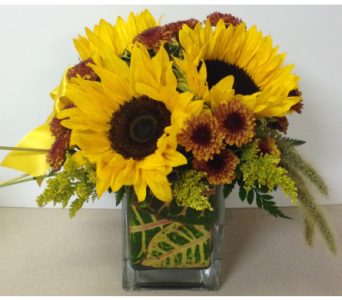Sunflower Harvest - 4x4 Glass Cube - All-Round in Wyoming MI, Wyoming Stuyvesant Floral