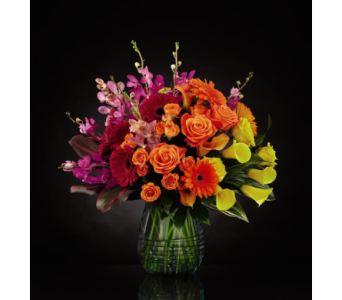 Beyond Brilliant Luxury Bouquet - Deluxe in Arizona, AZ, Fresh Bloomers Flowers & Gifts, Inc