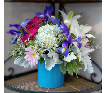 Moon Blue in Indianapolis IN, Madison Avenue Flower Shop