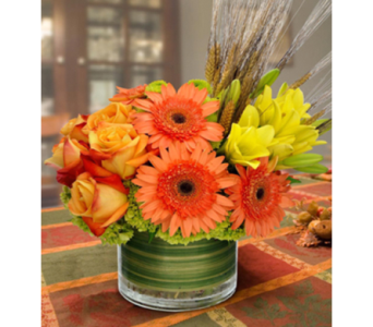 Trendy Autumn Fresh Bouquet in Indianapolis IN, George Thomas Florist