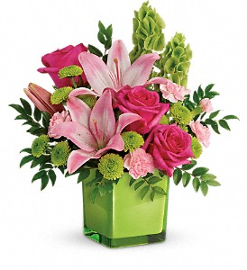 Teleflora's In Love With Lime Bouquet in Belfast ME, Holmes Greenhouse & Florist Shop