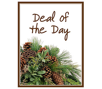 Deal of the Day - Winter in Yardley PA, Ye Olde Yardley Florist