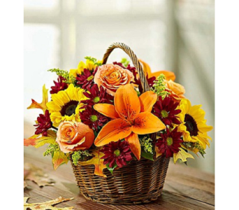 Autumnal Blooms Basket in Princeton, Plainsboro, & Trenton NJ, Monday Morning Flower and Balloon Co.
