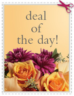 Today''s Daily Deal - Save $20.00 or More! in Cohasset MA, ExoticFlowers.biz