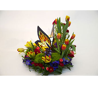 Beautiful Butterfly in Staten Island NY, Evergreen Florist