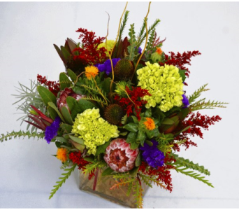 Tropical Bliss in Kissimmee FL, Golden Carriage Florist