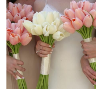 Tulips Hand Tied in Kissimmee FL, Golden Carriage Florist