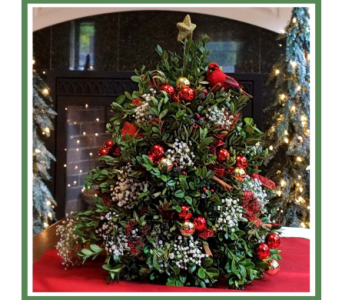 RedCardinal Boxwood Christmas Tree in Wolfeboro NH, Linda's Flowers & Plants