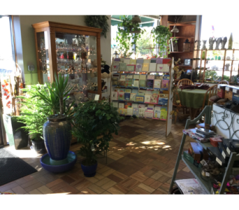 FMNST6 in Northfield MN, Forget-Me-Not Florist