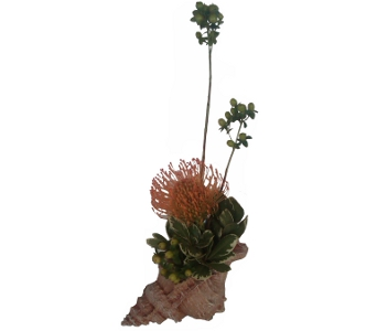 Seaside Protea Centerpiece in Cary NC, Cary Florist