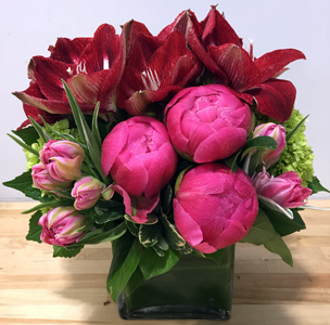 Magaryllys in New York NY, Starbright Floral Design