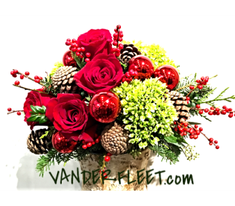 Holiday Red Charm in Etobicoke ON, VANDERFLEET Flowers