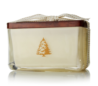 Frasier Fir by Thymes Two Wick Candle in Little Rock AR, Tipton & Hurst, Inc.