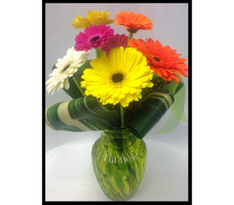 Gerbera fushion in Vermilion AB, Fantasy Flowers