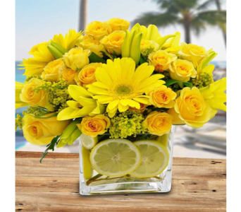 Citrus Sunshine in Indianapolis IN, George Thomas Florist