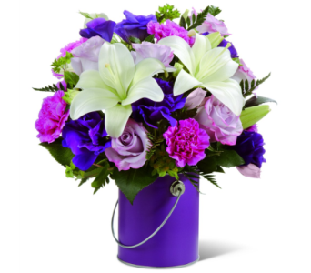 Color Your Day with Beauty in Norristown PA, Plaza Flowers