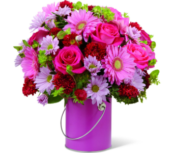 Color Your Day with Happiness in Norristown PA, Plaza Flowers