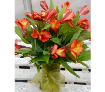 Orange Alstroemeria Vase in Skowhegan ME, Boynton's Greenhouses, Inc.