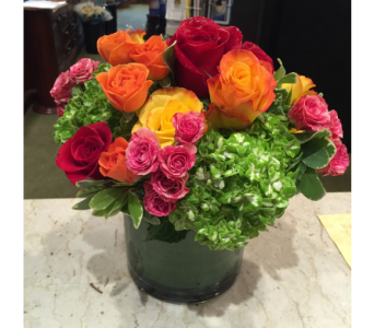 Roses in Vogue in Princeton, Plainsboro, & Trenton NJ, Monday Morning Flower and Balloon Co.