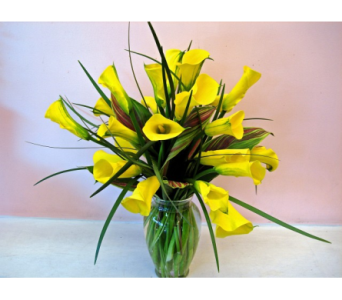 Exotic Calla Lilies in San Francisco CA, Fillmore Florist