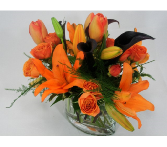 Black and Orange Delight in San Francisco CA, Fillmore Florist