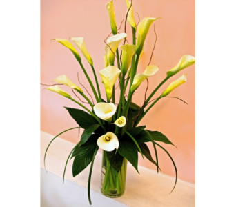 Fancy Calla Lilies in San Francisco CA, Fillmore Florist
