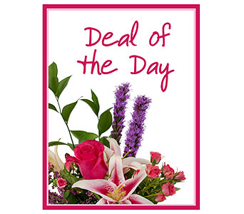 Deal of the Day in Champaign IL, April's Florist