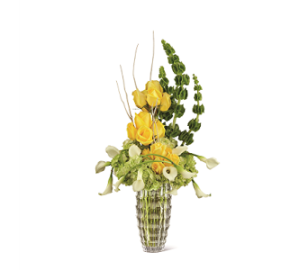 The FTD� Illuminate� Luxury Bouquet in Haymarket VA, Melanie's Florist