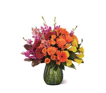 The FTD� Beyond Brilliant� Luxury Bouquet  in Haymarket VA, Melanie's Florist